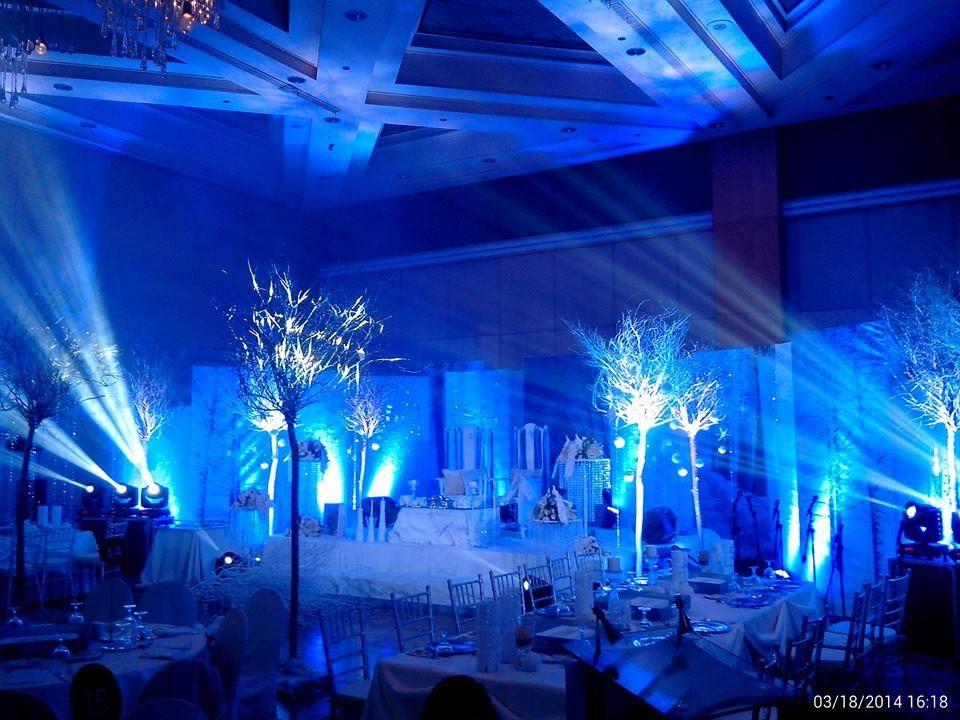Disney Frozen Theme Wedding