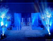 Jayella wedding with Disney Frozen Movie Theme 2