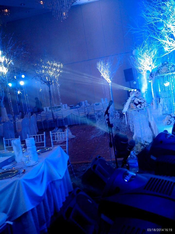 Jayella wedding with Disney Frozen Movie Theme 3